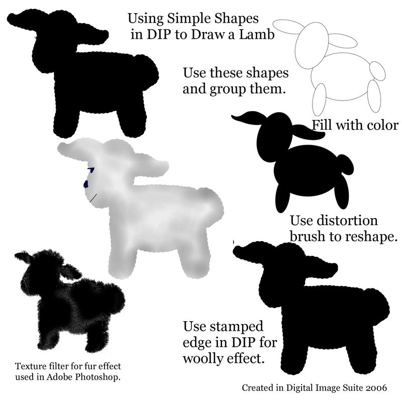 Copy of Lamb step by step