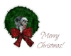 Mchristmas_pups_large_web_view