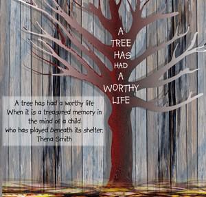 Board_f_tree